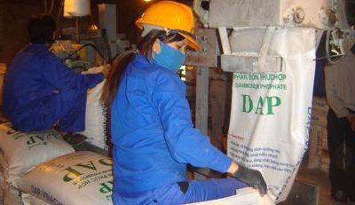 Phân bón DAP trong nước có đang bị làm giá?